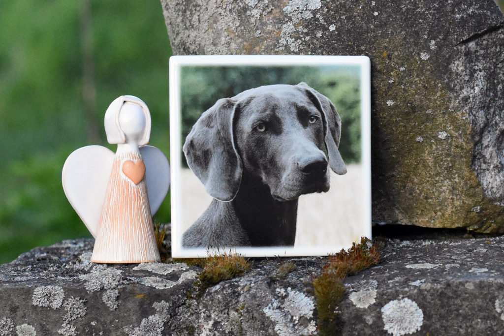 Náhrobok s podobizňou psa