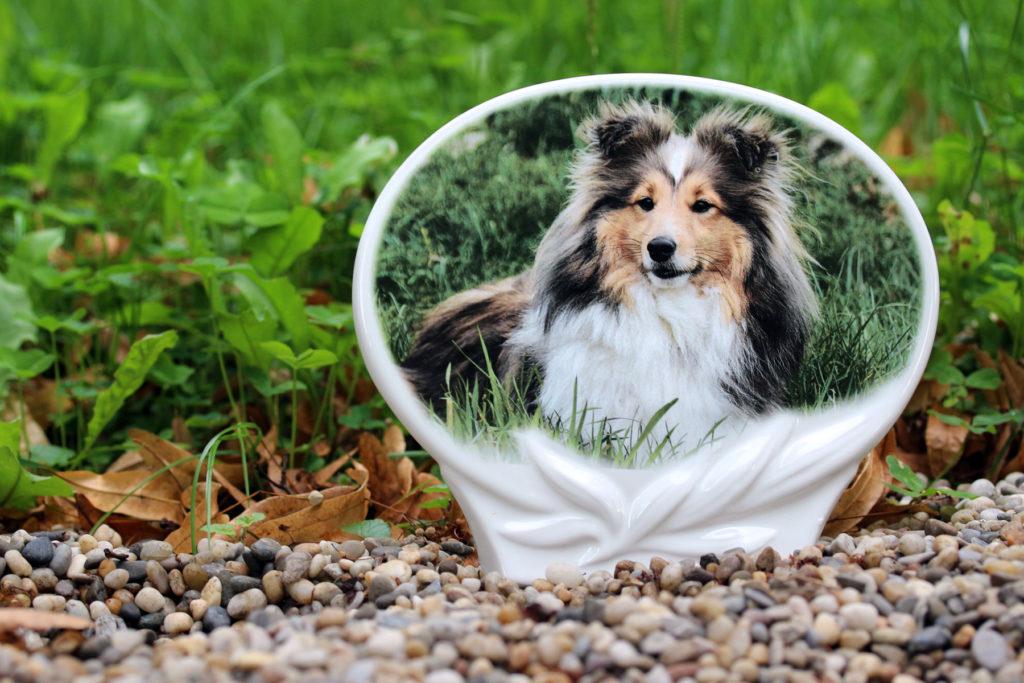 Náhrobný kameň pre psa